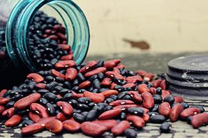 Spill the beans!
