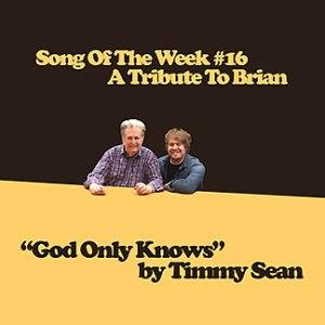 timmy-sean-brian-wilson