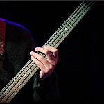 mystery bass player