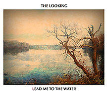 the looking album cover